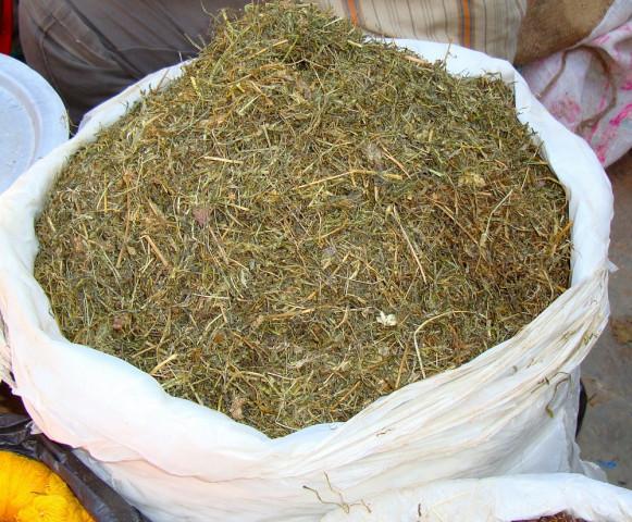 जिम्बु, भोटेजिराबाट लोभलाग्दो व्यापार गर्दे डोल्पाली