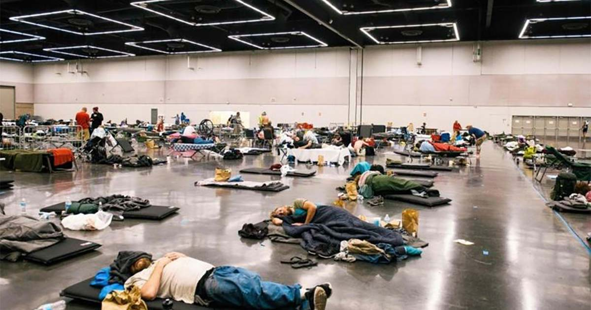 Extreme heat kills 486 people in Canada