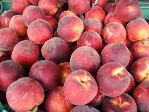 Start eating these fruits in rainy days, Diseases will not be able to touch the body